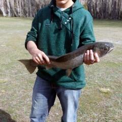 Muy buena pesca muy cerca del Complejo Las Lengas - Lago Posadas, Santa Cruz